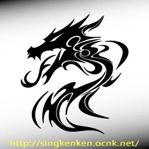 画像1: ドラゴンB