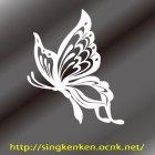 他の画像2: Butterfly 蝶 11