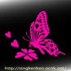 他の画像2: Butterfly 蝶 09