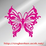 Butterfly 蝶 10